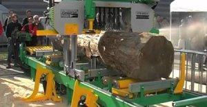 Porez vlastného dreva po dohode